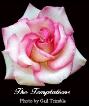 The Tempations